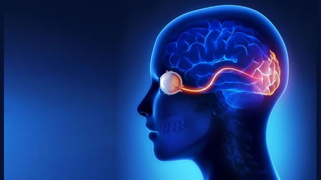 نوریت-اپتیک-باعث-اختلال-بینایی-میشود