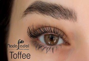 لنز تمتسی رنگی قهوه ای عسلی