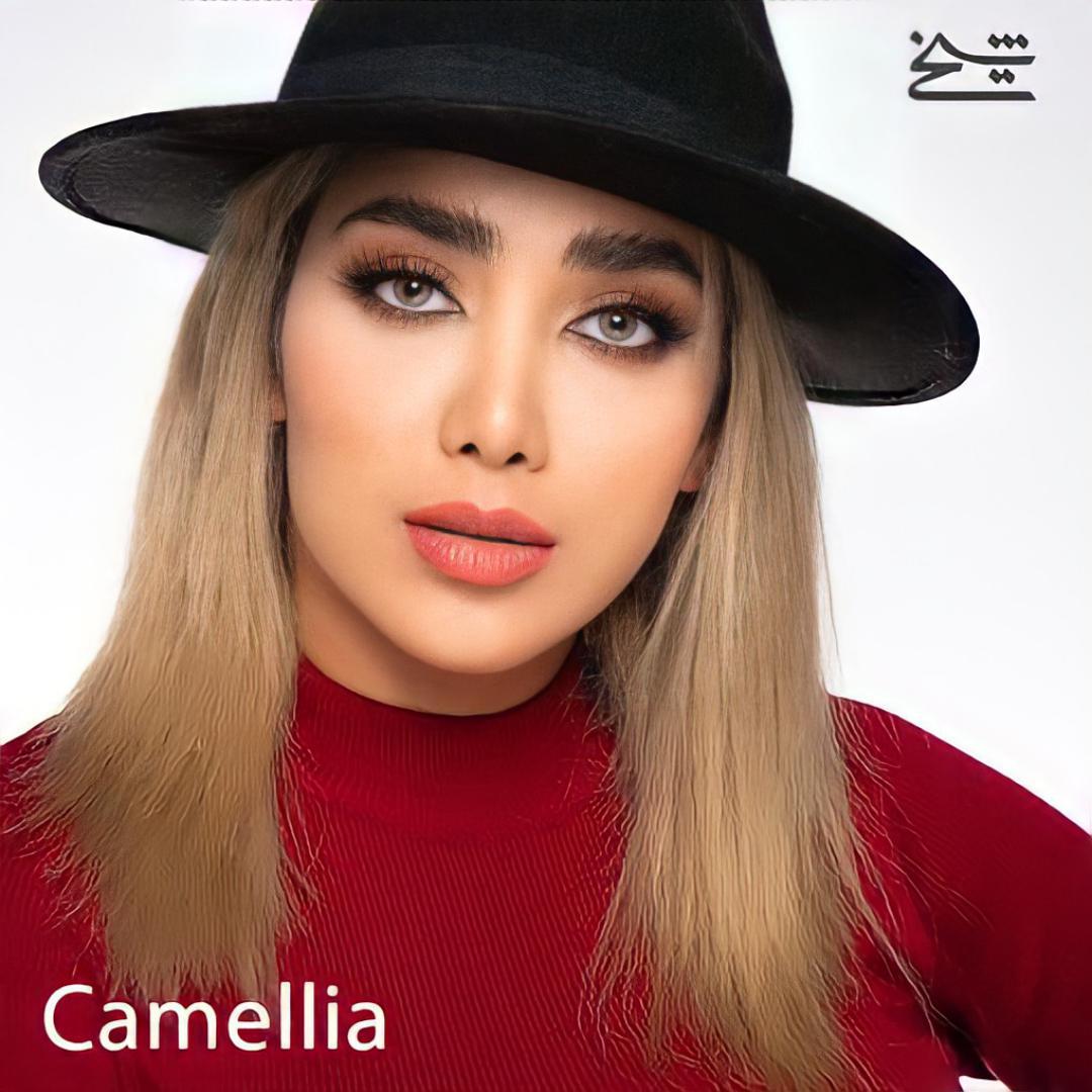 فروش لنز Camelia (عسلی طوسی سبز بدون دور)  برند شیخ بهمراه قیمت امروز لنز رنگی  و قیمت امروز لنز طبی
