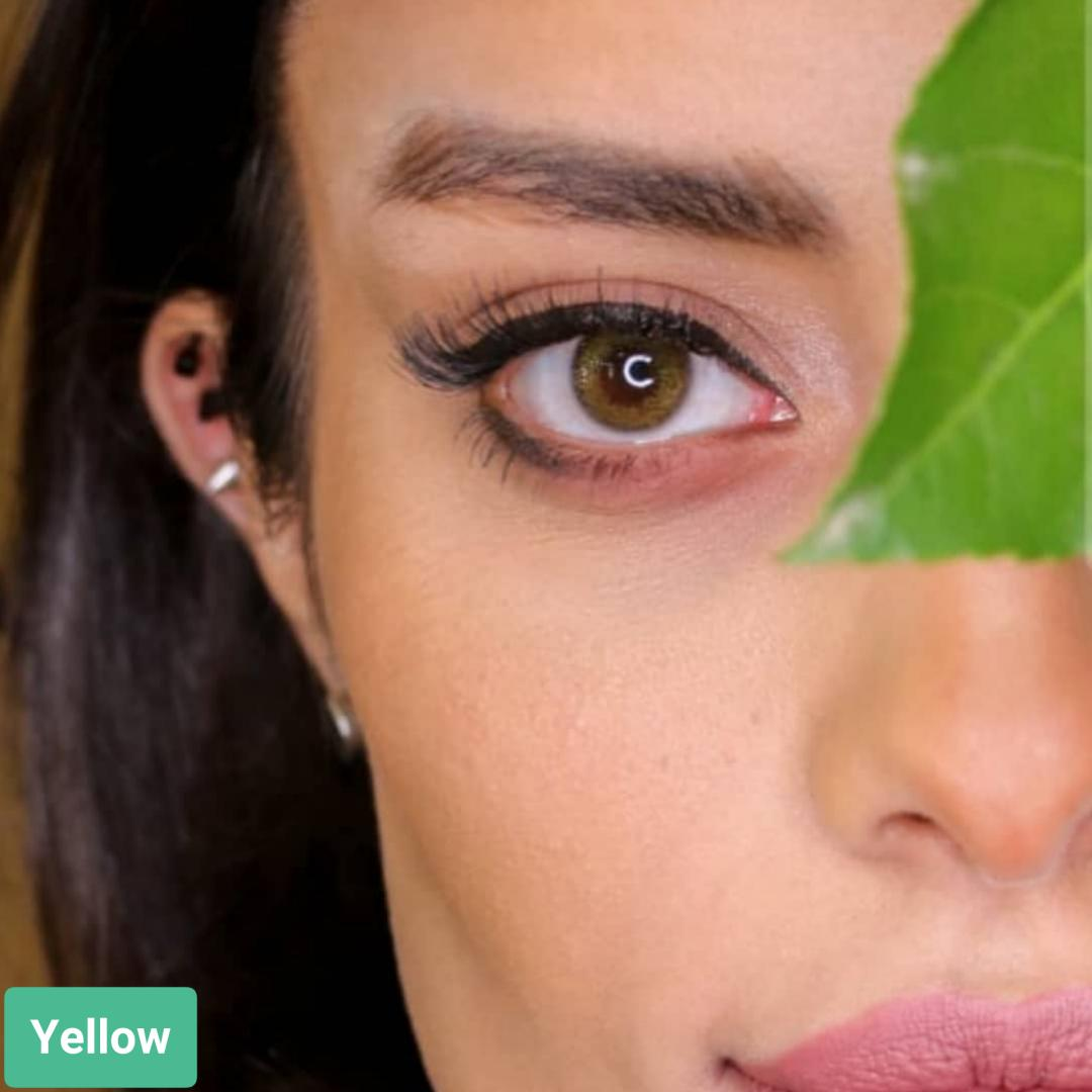 فروش لنز Yellow (زیتونی)  برند سولکو رنگی بهمراه قیمت امروز لنز رنگی و قیمت امروز لنز طبی