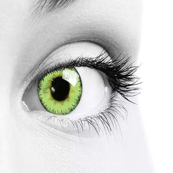 فروش لنز Green (سبز) برند سولکو رنگی  بهمراه قیمت امروز لنز رنگی و قیمت امروز لنز طبی