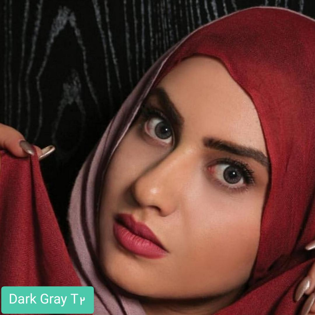 فروش لنز Dark Gray T2(طوسی دوردار) برند الگانس بهمراه قیمت امروز لنز رنگی و قیمت امروز لنز طبی